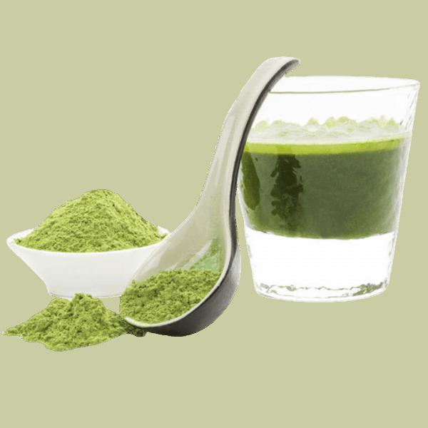 Greenbooster Sample